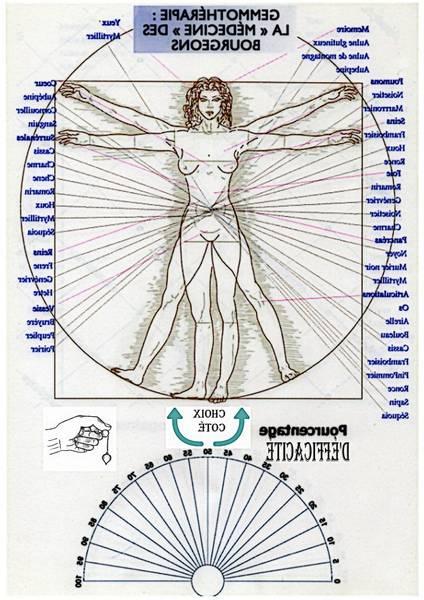radiesthésie vibratoire pdf