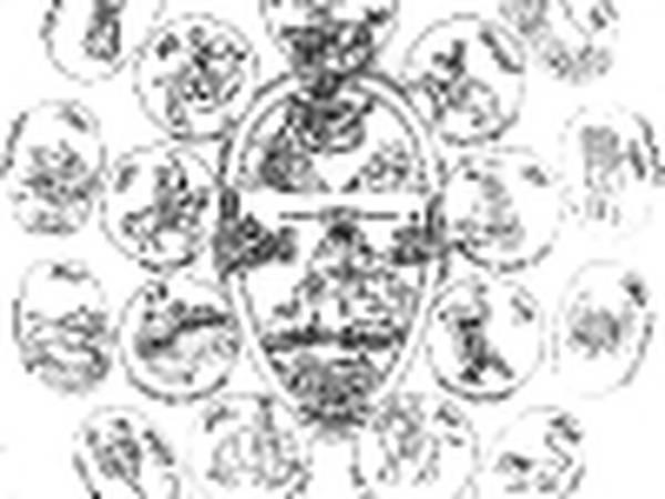 astrologie youtube macron